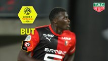 But Mbaye NIANG (44ème) / Stade Rennais FC - Paris Saint-Germain - (2-1) - (SRFC-PARIS) / 2019-20