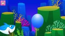 Video Baby Shark Balloon - Baby Shark doo doo doo - Baby Shark Compilation and More Kids Songs