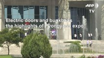 Electric doors highlight of North Korean expo