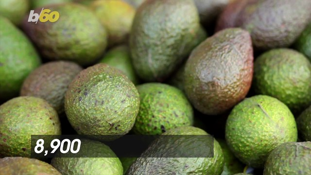Avoca-DON'T! There Were an Estimated 8,900 Avocado-Related Injuries Last Year