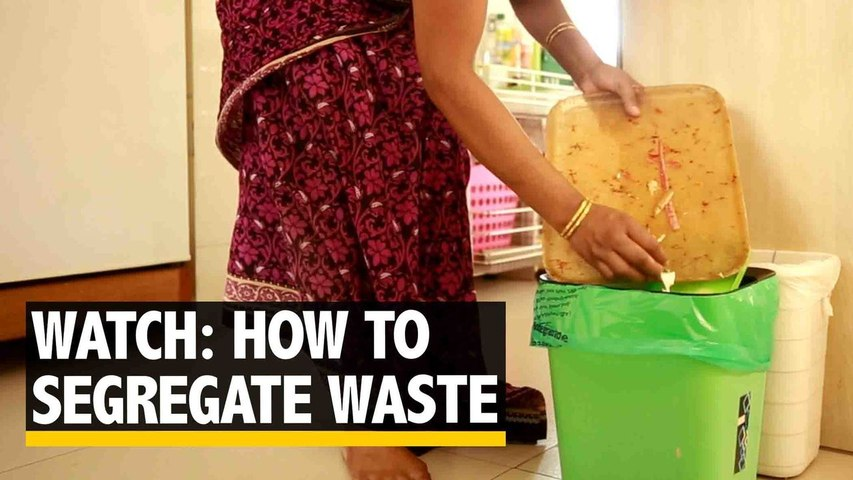 Want to Save the Environment? Begin Segregating Waste.