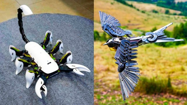 AMAZING ROBOTIC ANIMALS YOU MUST SEE 2019