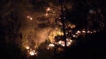 Orman yangını, ekiplerin müdahalesi ile yerleşim merkezlerinden uzaklaştırıldı (2)