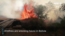 Wildfires burn more than 471.000 hectares of land in Bolivia