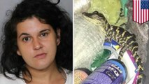 Florida woman gets probation after pulling gator from her pants