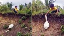 Ente bringt kleinem Jungen verlorenen Schuh zurück