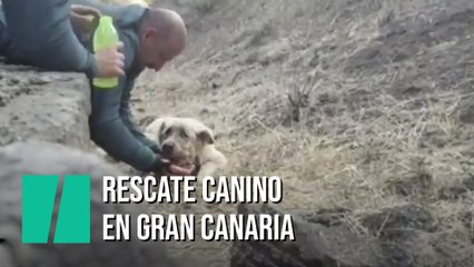El gesto de dos guardia civiles en el incendio de Gran Canaria