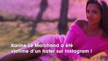 Karine Le Marchand : critiquée pour ses vergetures, elle répond sèchement à un internaute