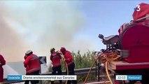 Incendie : drame environnemental aux Canaries