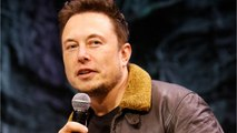 Elon Musk Tweets About Asteroid Hitting Earth: NASA Says Calm Down
