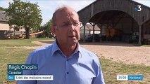 Agriculture : la moisson de blé est excellente