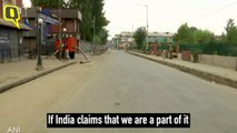 'Fresh Rumours Torture Us Everyday': Kashmiri Locals on Article 370