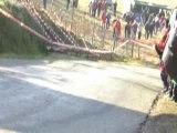 Loeb es 11 monte carlo 2008