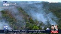 72.843  c'est le nombre de départs de feux au Brésil, touchant notamment l'Amazonie où la déforestation continue