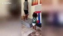 Ce bébé n'arrête pas de marquer des dunks en basketball !