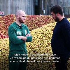 FruitsEfforts_Antoine