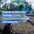 La forêt amazonienne n'en finit pas de brûler