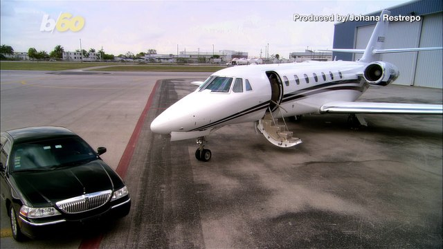 Private Jet Company Offering Top of the Line Pampering for Pets
