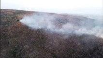 L'Amazzonia brucia, a rischio la lotta al cambiamento climatico