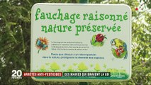 Arrêtés anti-pesticides : ces maires qui bravent la loi