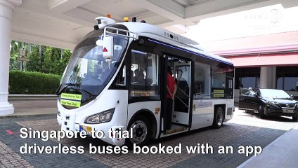 Singapore to trial driverless buses