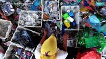 Foreign trash 'like treasure' in Indonesia's plastics village