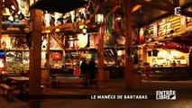 Reportage sur les cheveaux et le cirque Bartabas