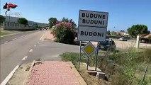 Sassari - Scoperte due piantagioni di marijuana tra Budoni e San Teodoro (22.08.19)