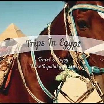 Visit Cairo from El Sokhna Port - El Sokhna Port Shore Excursions