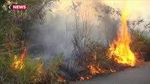 Incendies en Amazonie : Jair Bolsonaro estime qu'Emmanuel Macron agit comme un «colonialiste»