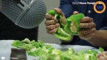 Les bruitages de Mortal Kombat  sont réalisés avec...des fruits !
