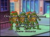Teenage Mutant Hero Turtles - 036. Teenage Mutant Hero Turtles