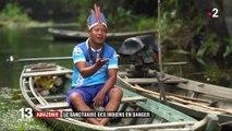 Amazonie : le sanctuaire des Indiens est en danger