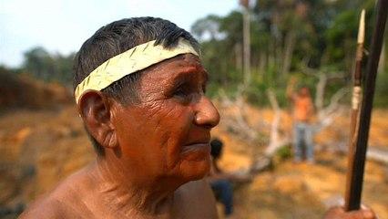Video: Amazon'un yerli halkı Muralardan yangınlara ve Bolsonaro'ya karşı direniş sözü