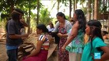 Les populations indigènes vivant en Amazonie, menacés par la déforestation