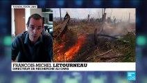 """Incendies en Amazonie : """"les feux sont le miroir du phénomène de déforestation"""""""