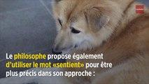 Peter Singer, la zoophilie et les droits des animaux