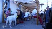 Tourisme : Qui sont les cyclistes de la Loire à vélo ?