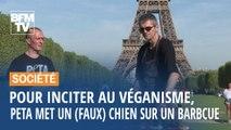 Paris: un (faux) chien sur un barbecue pour inciter au véganisme