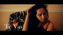 GRUPO QUINTANNA - TE VAS - (Video Lyrics/Letra)