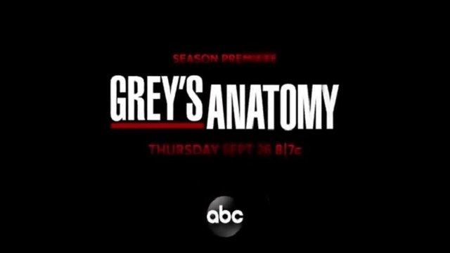 Grey's Anatomy - Promo 16x12