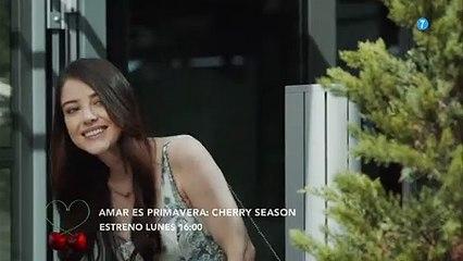 Amar es primavera Cherry Season