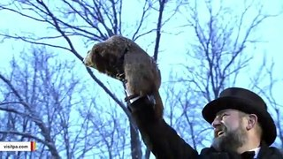 Groundhog Day 2020: Punxsutawney Phil Sees Early Spring