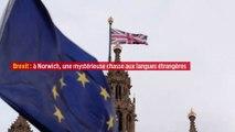 Brexit : à Norwich, une mystérieuse chasse aux langues étrangères