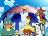 Pokemon 8 sezon 50 Bölüm (Türkçe Dublaj)