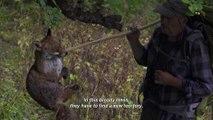 Wolf Walk / Marche avec les loups (2020) - Trailer (English Subs)