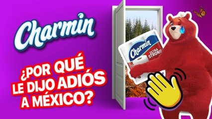 ¿CHARMIN se FUGA de MÉXICO?  | Caso CHARMIN