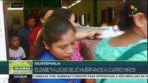 Conexión Global: Brasil: Indígenas Guaraní rechazan tala de árboles