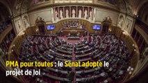 PMA pour toutes : le Sénat adopte le projet de loi