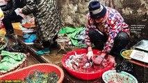 CoronaVirus In China - Maulana Tariq Jameel Byan Related With CoronaVirus